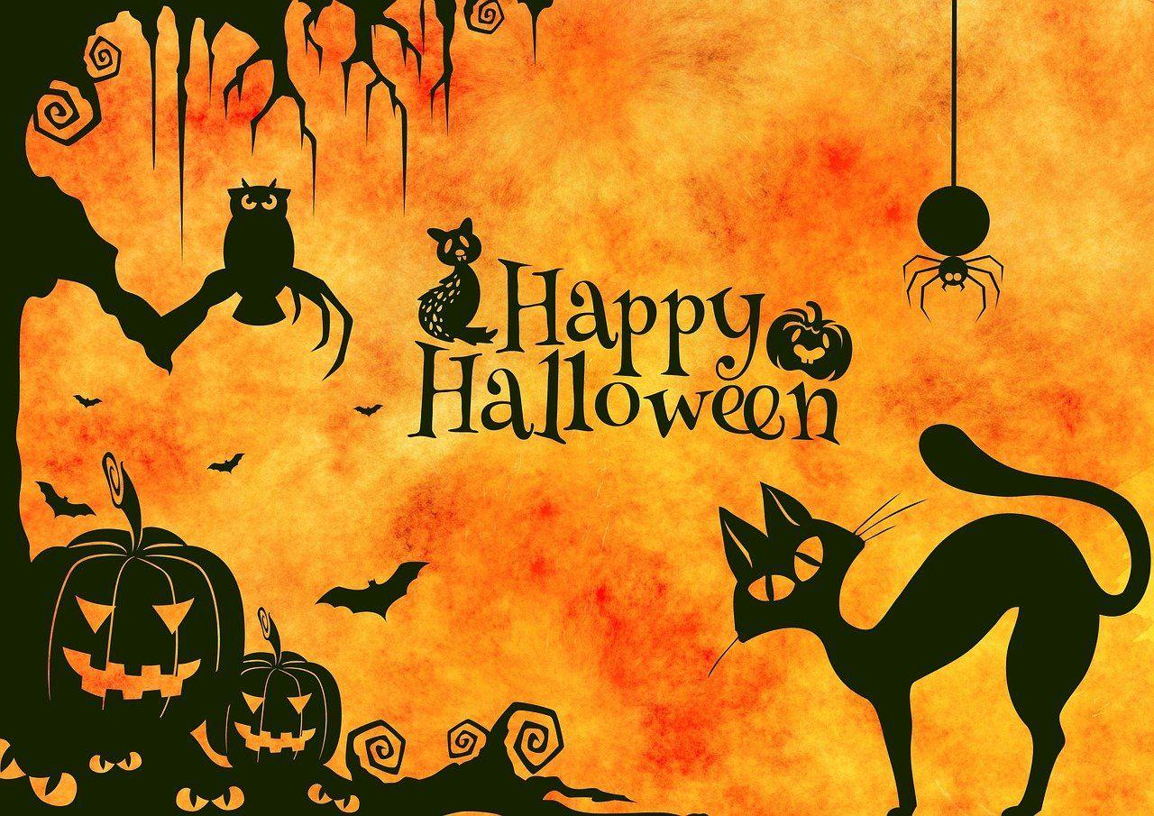 Halloween Kocsma Túra